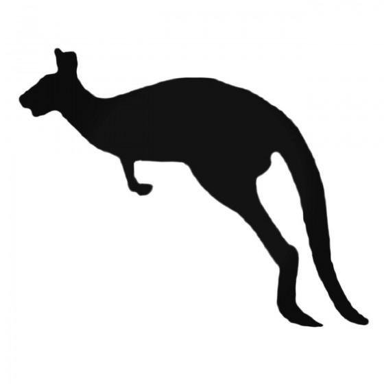 Kangaroo Hopping To The...