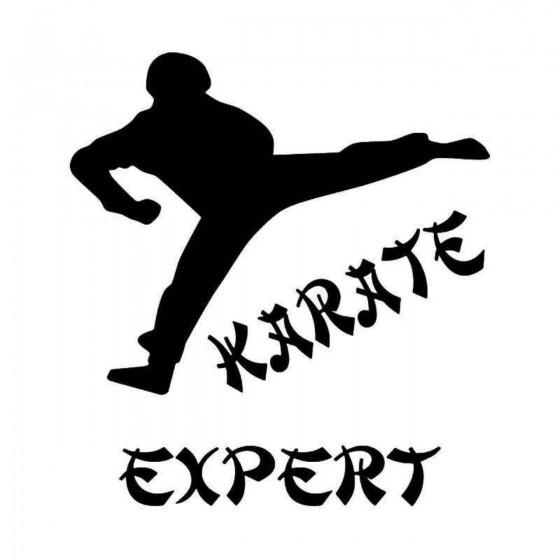 Karate Expert Vinyl Decal...
