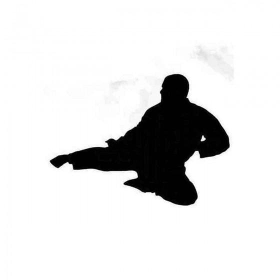 Karateka Kick In The Air...