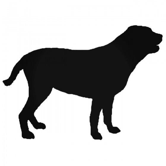 Labrador Retriestyle Stds...
