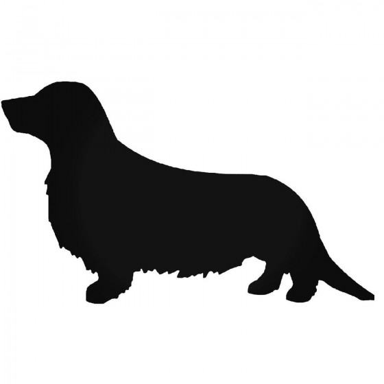 Longhaired Dachsund Dog 1...