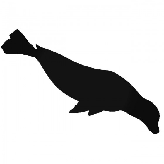 Seal Sea Lion 6 Decal Sticker
