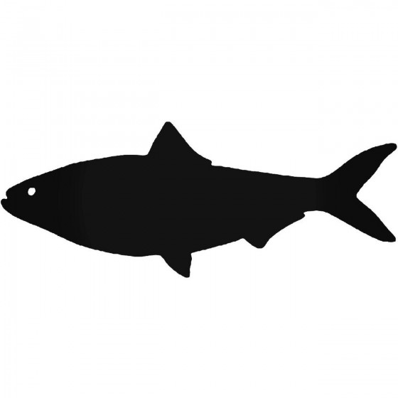 Shad Fish Decal Sticker
