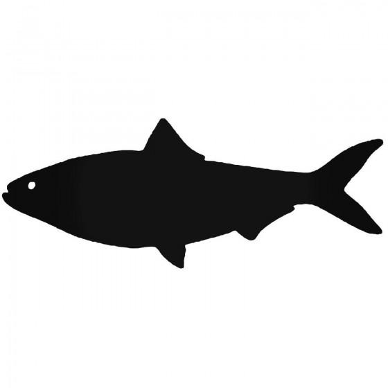 Shad Fish Vinyl Decal Sticker