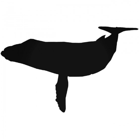 Whale 028 Decal Sticker