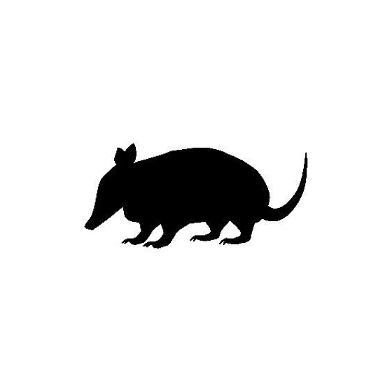 Armadillo Decal Sticker V17