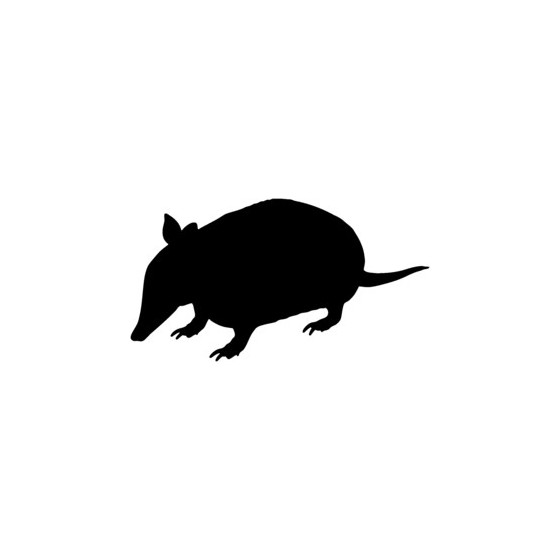 Armadillo Decal Sticker V2