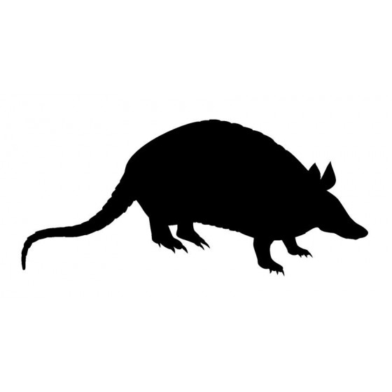 Armadillo Decal Sticker V25