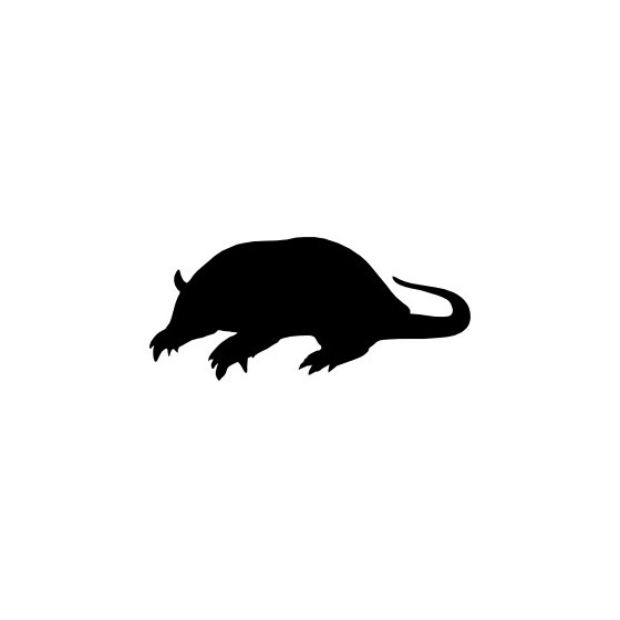 Armadillo Decal Sticker V27