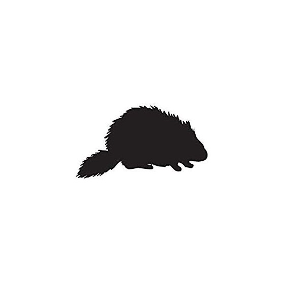 Beaver Decal Sticker V12