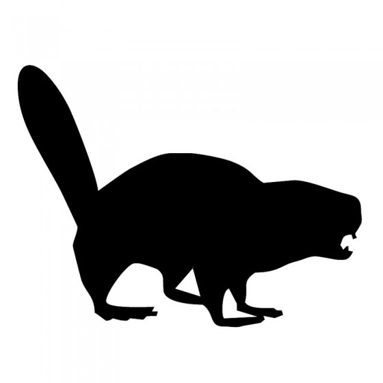 Beaver Decal Sticker V13