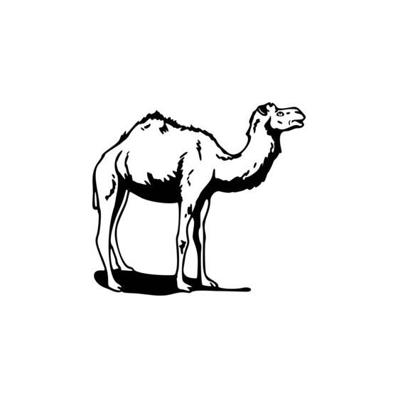 Camel Vinyl Decal Sticker V2