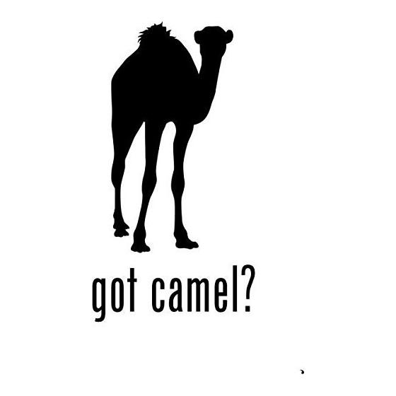 Camel Vinyl Decal Sticker V4