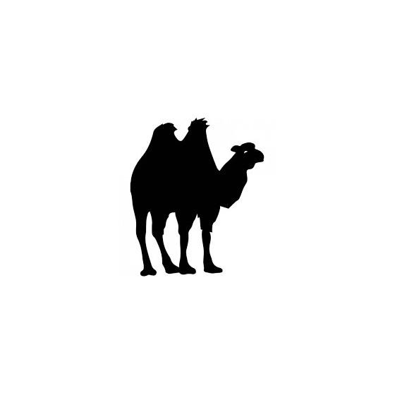 Camel Vinyl Decal Sticker V46
