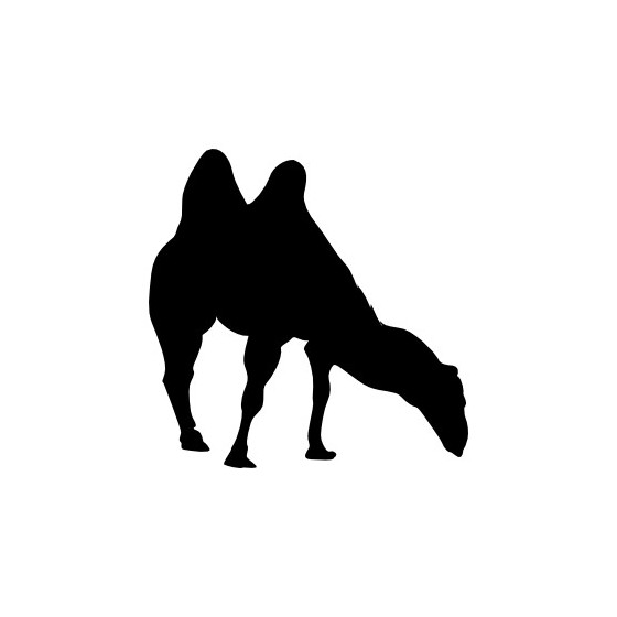 Camel Vinyl Decal Sticker V47