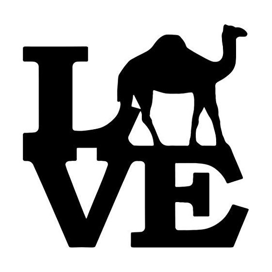 Camel Vinyl Decal Sticker V7