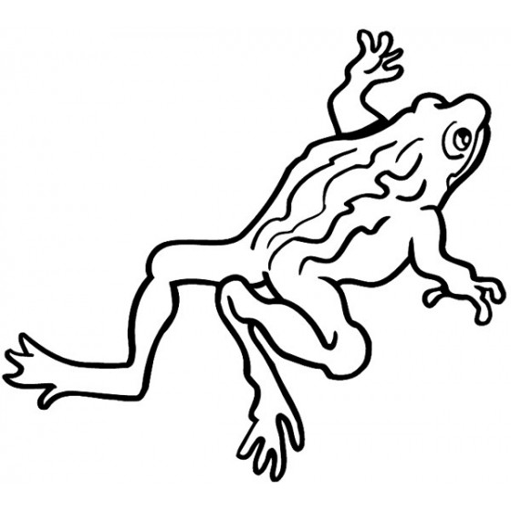 Frog Vinyl Decal Sticker V116