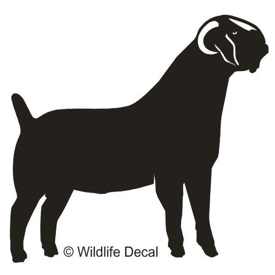 Goat Vinyl Decal Sticker V18