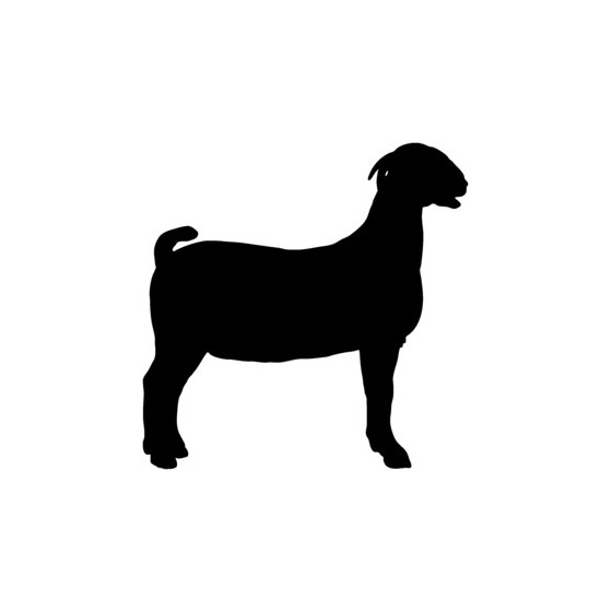 Goat Vinyl Decal Sticker V8
