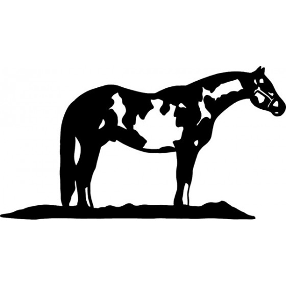 Horse Vinyl Decal Sticker V100