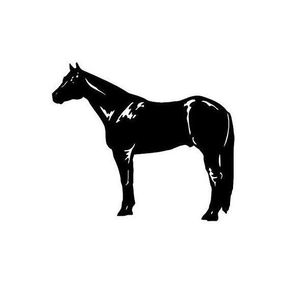 Horse Vinyl Decal Sticker V106