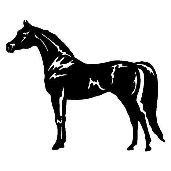 Horse Vinyl Decal Sticker V120