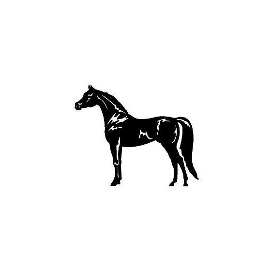 Horse Vinyl Decal Sticker V121