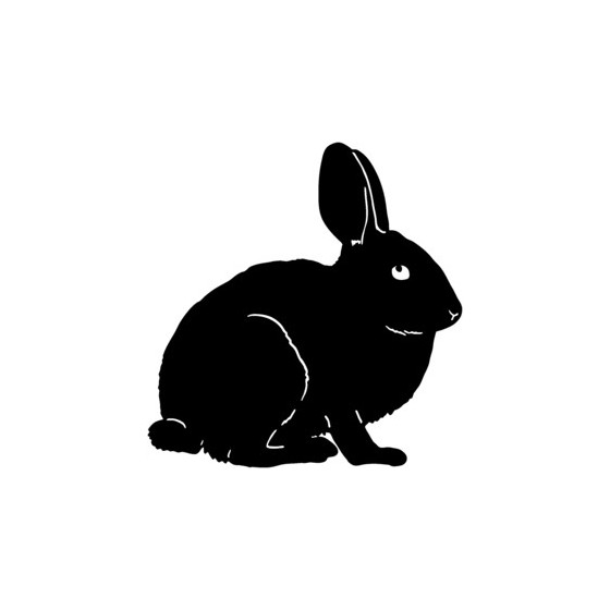 Rabbit Vinyl Decal Sticker V3