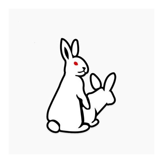Rabbit Vinyl Decal Sticker V33