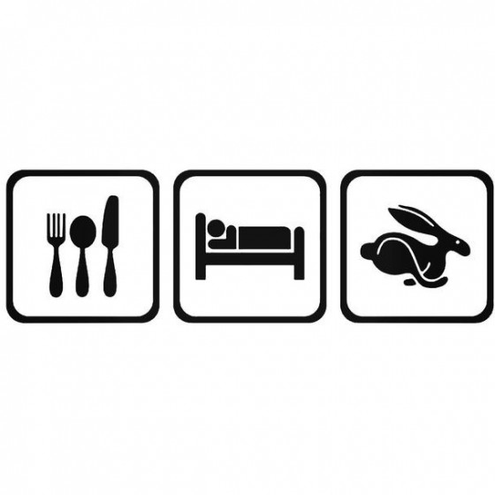 Eat Sleep Volkwagen Rabbit...
