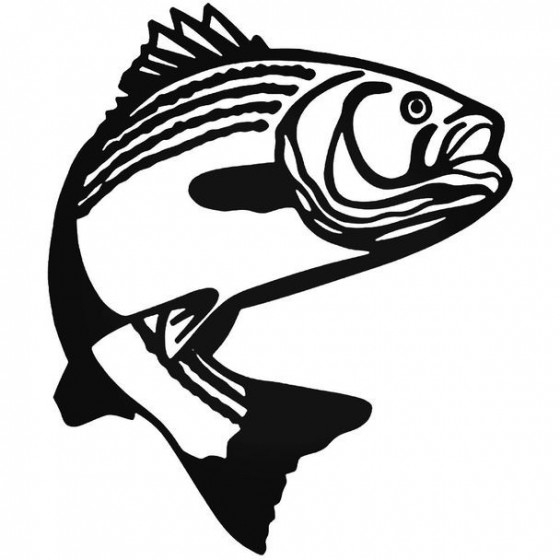 Bass Fish Wildlfie