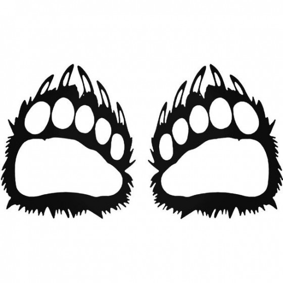Bear Paws Wildlfie
