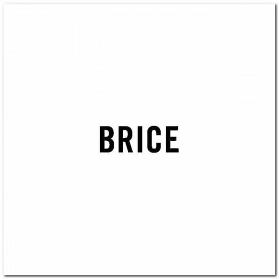 Brice Logo Vinyl Band Logo...