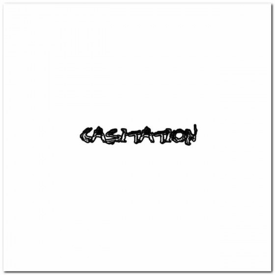 Casitation Logo Decal Band...