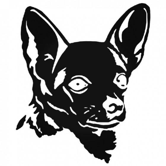 Chihuahua Dog Face