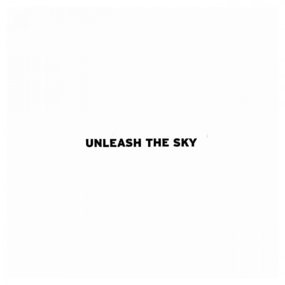 Unleash The Sky Band Decal...