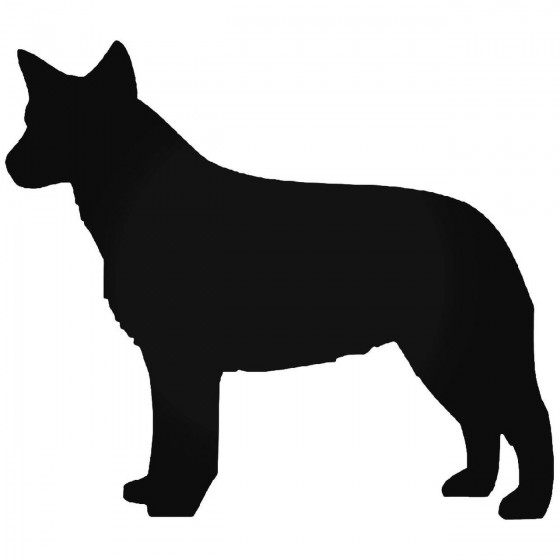 Australian Cattle Dog 1...