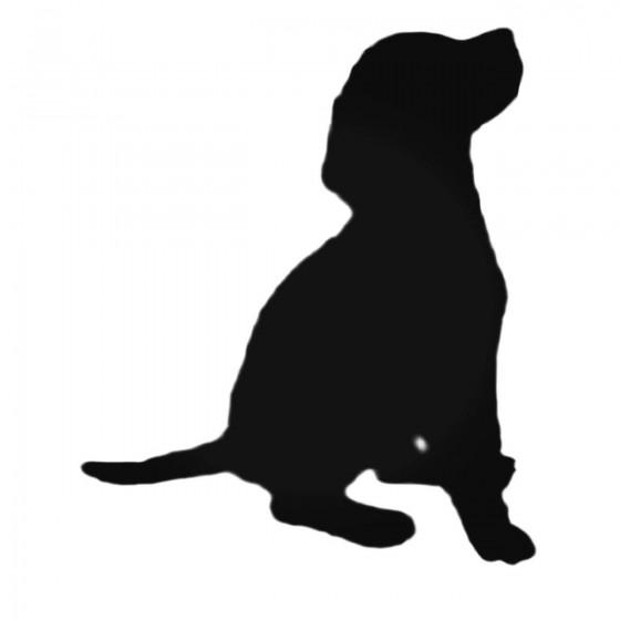 Beagle Stdh Style 3 Hunting...