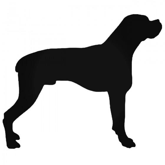 Boxer Bulldog Stdw Style 43...