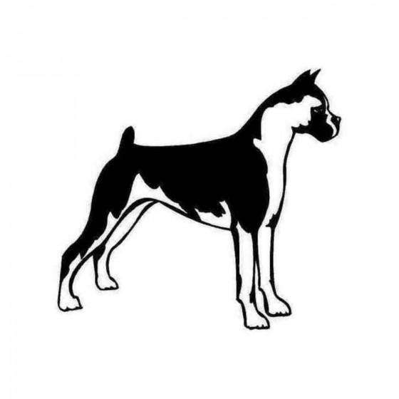 Boxer Dog Detailed...
