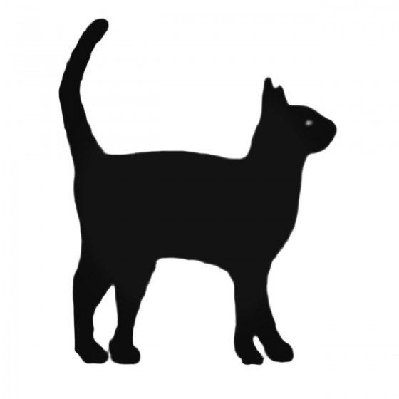 Cat Excited Decal Sticker