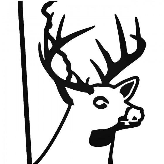 Delaware State Deer Buck...