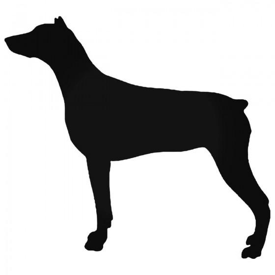 Doberman Stdw Guard Dog...