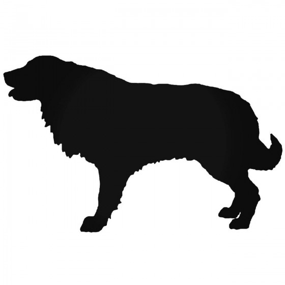 Estrela Dog Sticker