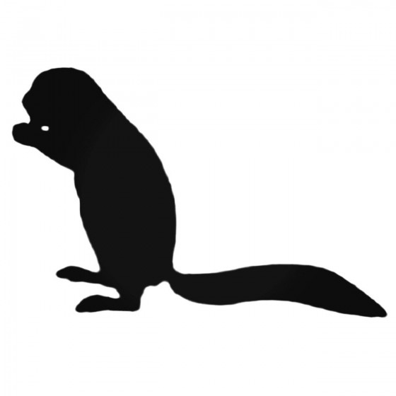 Ferret Decal Sticker