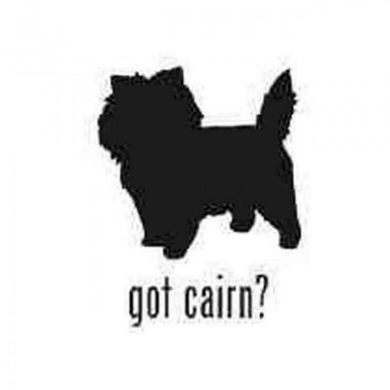 Got Cairn Terrier Dog...