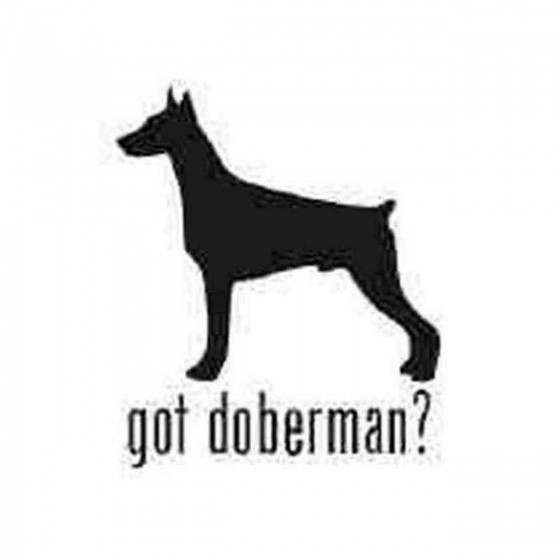 Got Doberman Pinscher Dog...