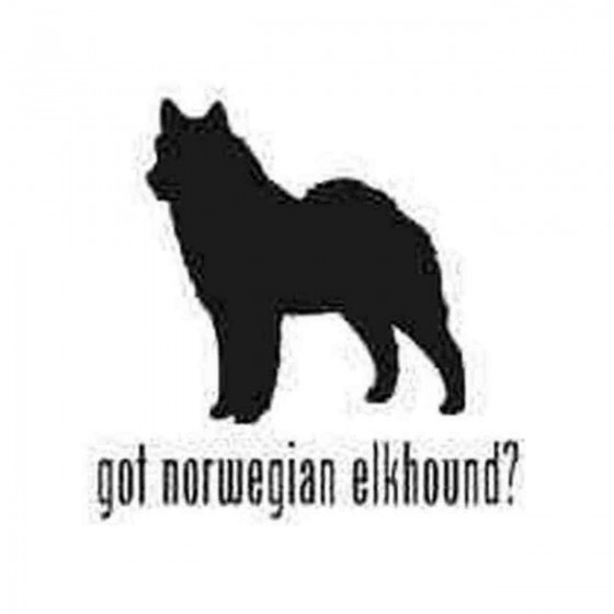 Got Norwegian Elkhound Dog...