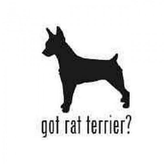 Got Rat Terrier Dog Decal...