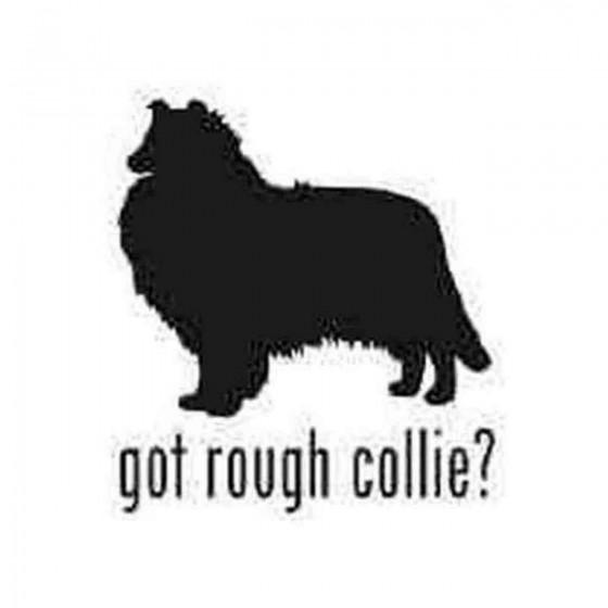 Got Rough Collie Dog 1...